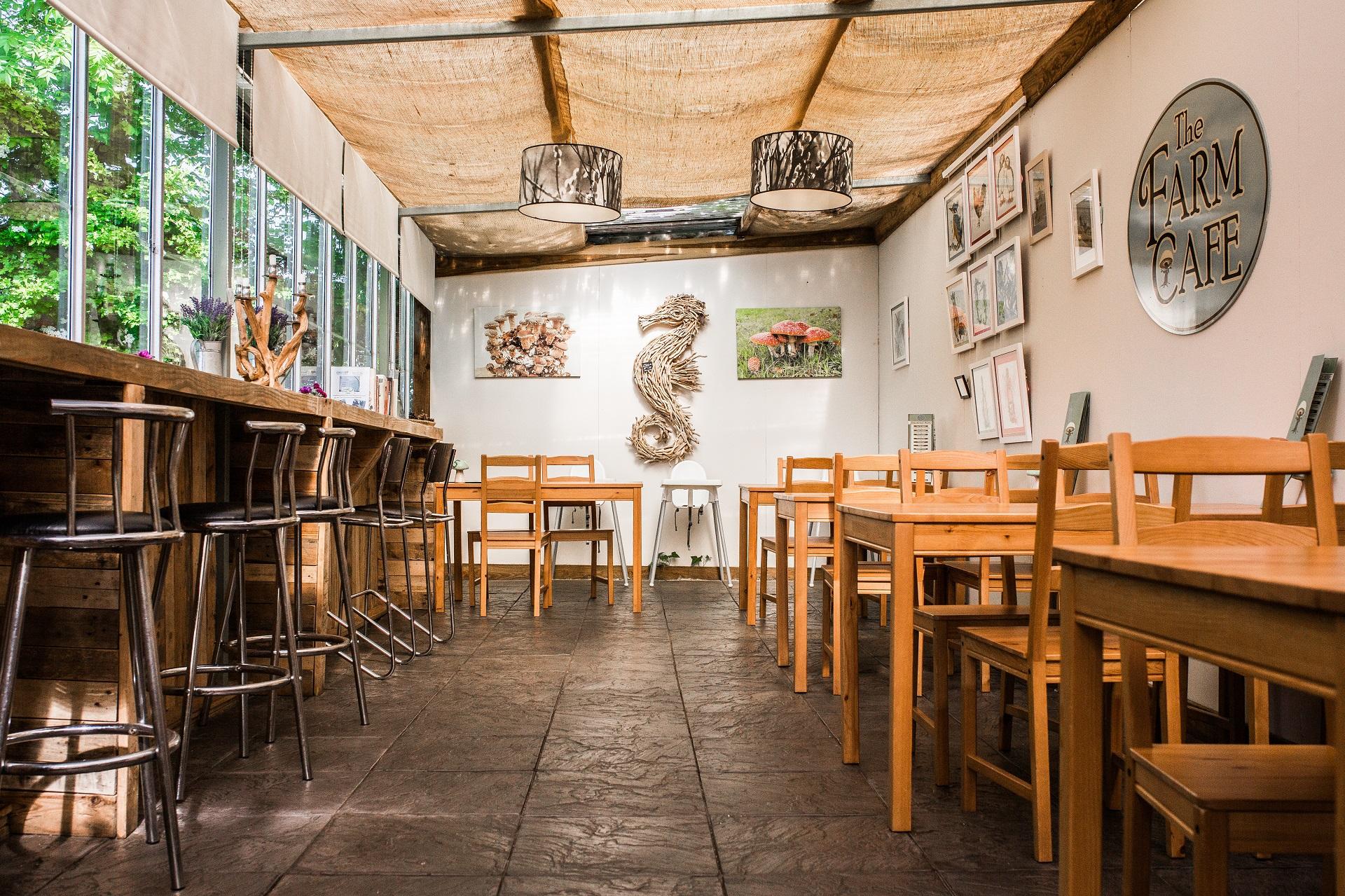 Forest Fungi - The Farm Cafe
