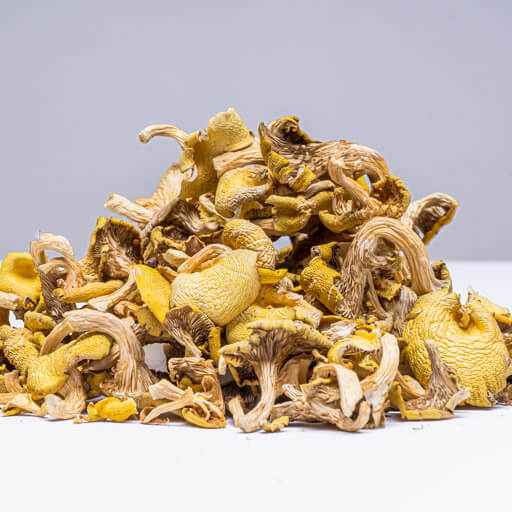 Dried Yellow Oyster Mushrooms