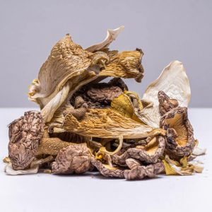 Loose Dried Mixed Gourmet Mushrooms